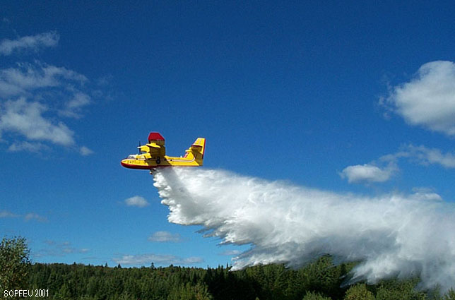 Des pompiers de la SOPFEU de Roberval en Californie