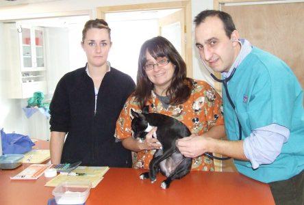Le vétérinaire Cherrouk Yacine vient répondre à un besoin à Roberval