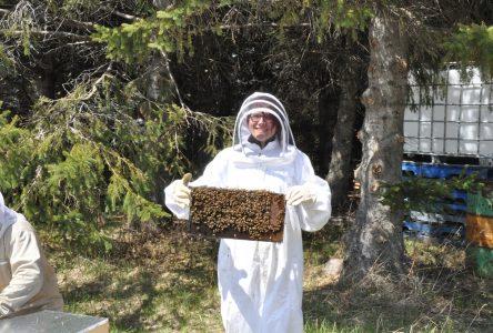 Hélène essaie l'apiculture