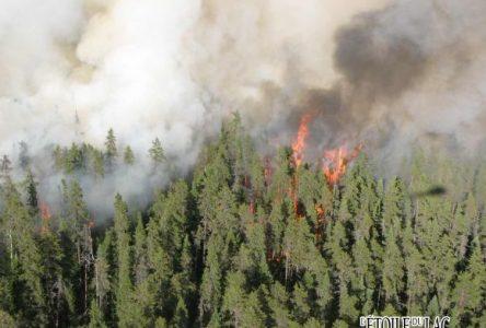Incendies de forêt : évacuations nécessaires dans le secteur du lac Smokey