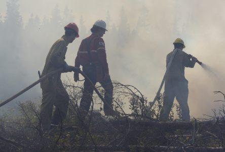 Feu de forêt à La Doré: 60 pompiers au combat