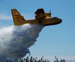Le plus bas taux d'incendie de forêts depuis 30 ans