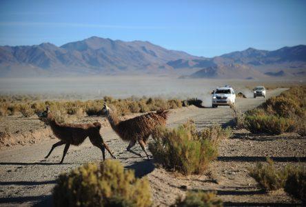 Lynda et Julie Cayouette rouleront dans la Cordillère des Andes