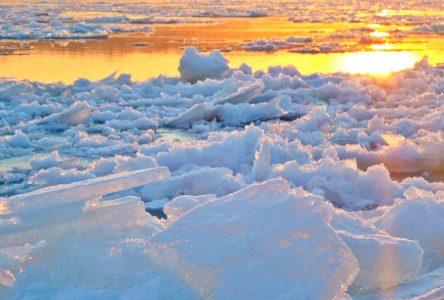 Le départ des glaces sera-t-il le 15 mai à 14 h 30 ?