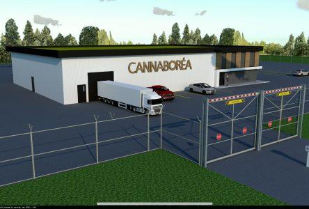 Nouvelle étape de franchie pour CannaBoréa