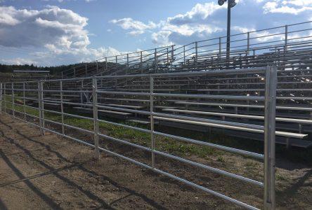 Un manège plus sécuritaire pour le Festival du cowboy