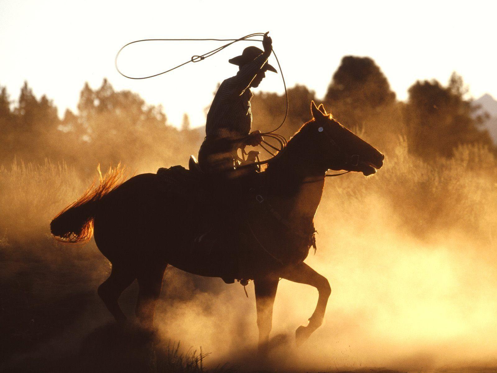 Le Festival du Cowboy de Chambord, ça commence aujourd'hui!