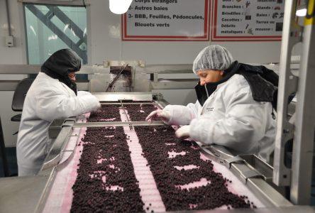 Le recrutement des travailleurs étrangers s'annonce plus difficile
