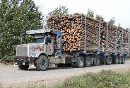 La foresterie dispose toujours d'une relève