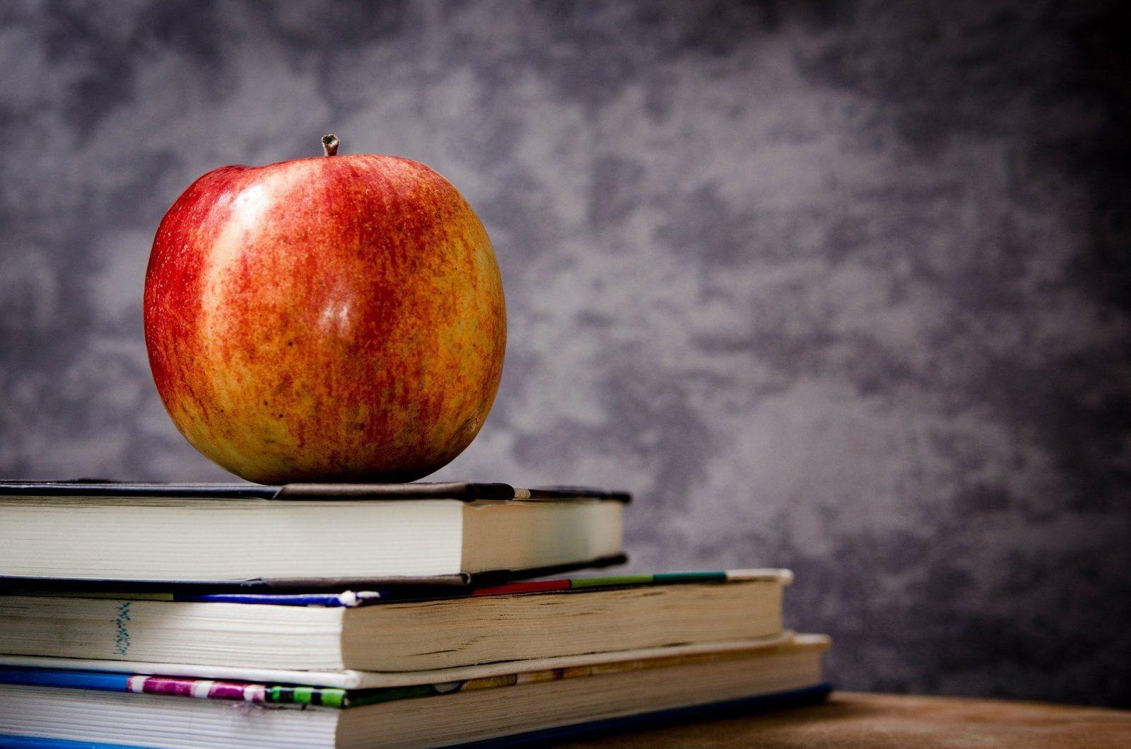 Commission scolaire du Pays-des-Bleuets: en grève le 14 avril