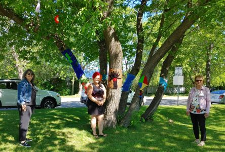 Un tricot urbain collectif inauguré au Parc du 150e