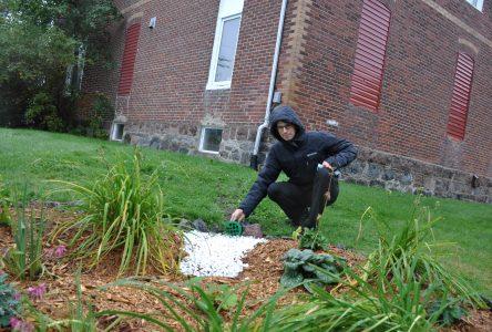 Le CREDD invite les citoyens à se doter d'un « jardin de pluie »